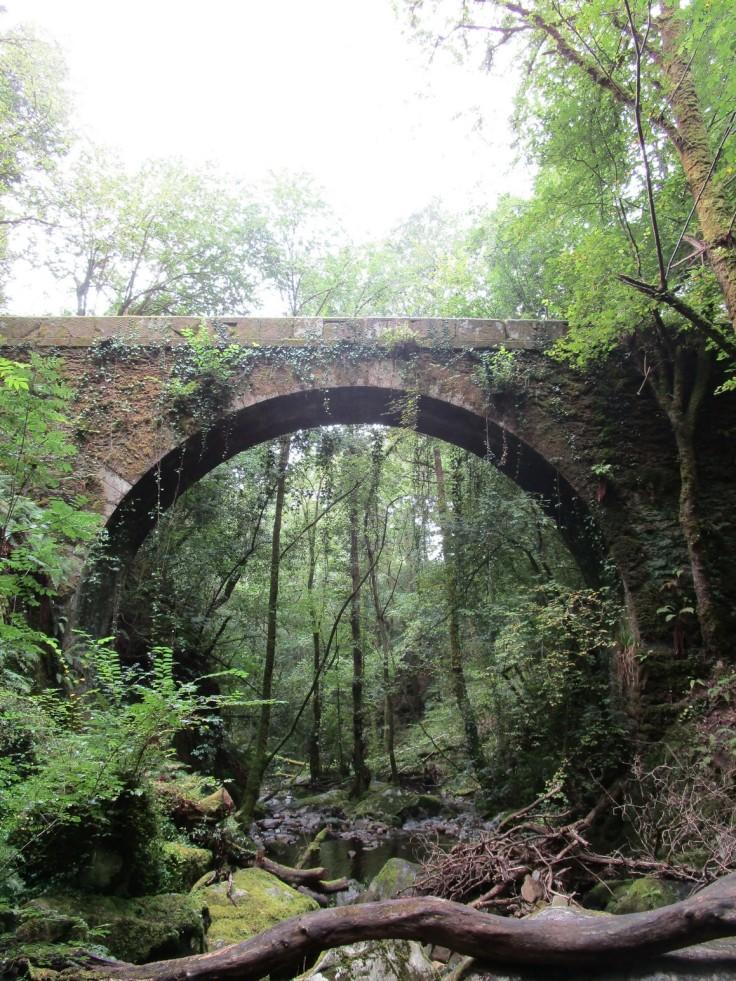 Puente junto al monasterio de Caaveiro.