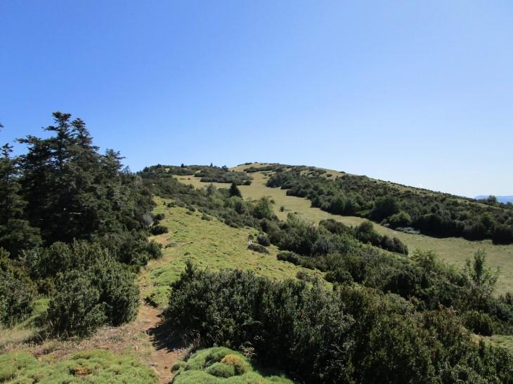 Punta Bacials
